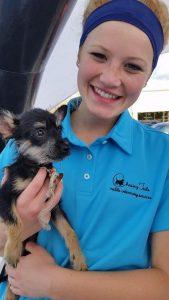 A mobile vet in Sugar Land Texas